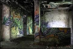Defco/Reiz (SKE) Tags: urban terrain streetart art colors wall painting graffiti paint artist couleurs tag letters style spot spray painter graff mur bombing lettres graffeur photographe graphotism friche