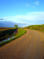 Turn That Frown Upside Down! (Alyssa.Chartrand) Tags: road blue sky tree green grass outside distance gravel