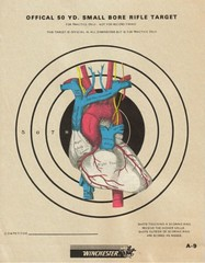 Target Heart Rate (dadadreams (Michelle Lanter)) Tags: collage heart anatomy target anatomical