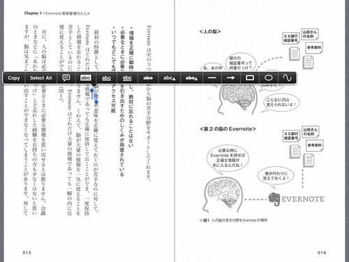 ipad_bookreader_12