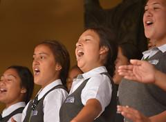 Pasifika (Peter Jennings 18.8 Million+ views) Tags: park new festival hawaii polynesia islands state cook peter auckland zealand springs nz western maori aotearoa aloha tonga jennings aroha oceania 2014 pasifika