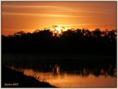 Sunrise and some Birds (stephgum32807) Tags: autumn nature birds sunrise orlando nikon florida coolpix5600 superbmasterpiece
