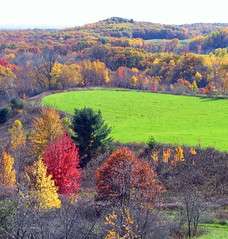 Nature's Glory (akahodag) Tags: autumn fall wisconsin vivid blackriverfalls beautifulcapture mywinners 5for2 platinumphoto superbmasterpiece brillianteyejewel top20autumn