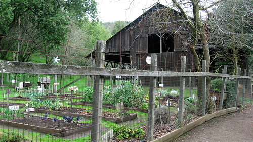 barn and garden at Deer Hollow Farm