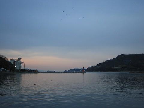 あり長水産-漁港