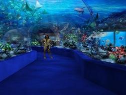 manila-ocean-park09