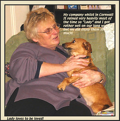 Lady loves to be loved. (Whitesusie) Tags: lady again trust weeks 52 animallove sharingaquietmoment