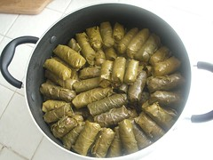 Dolma Demo10.dolma pot