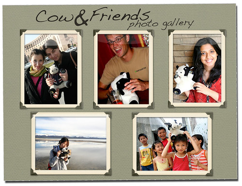 The Cow and Friends Photo Gallery