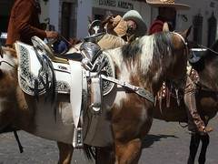Montura (Myrkha) Tags: mexico caballo zacatecas jinete jerez artesania tradicion charro montura galope sabadodegloria
