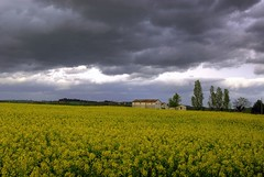 Rain (emorpi) Tags: italy clouds italia nuvole searchthebest di provincia marche jesi colline castelli ancona nikonstunninggallery abigfave marchigiane