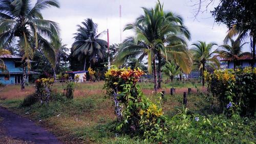 Costa Rica Parismina.2