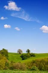 Semplicità in campagna