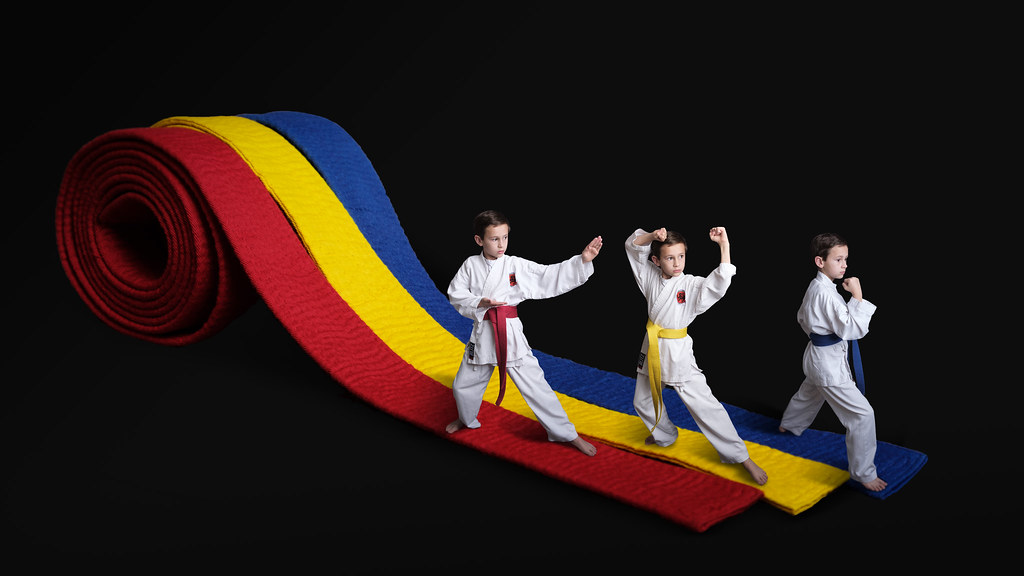 Research paper on karate