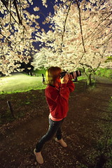 Cherry Blossoms Photographer (Spice  Trying to Catch Up!) Tags: pink blue trees red woman plants flower green art grass japan female night canon hair cherry geotagged asian photography eos spring interesting flora shoes asia flickr colours photographer legs image bokeh blossoms picture livejournal jeans   5d trunks     gettyimages 2010 facebook   friendster multiply           twitter canoneos5dmarkii twitpic   cherryblossomsviewing  familygetty2010