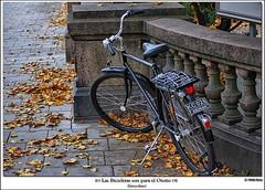 Las Bicicletas son para el Otoo (Miguel Daz (Mad-King)) Tags: bike nikon sweden stockholm bicicleta hdr estocolmo suecia d40x frhwofavs