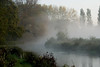 Misty river (Ghazghul) Tags: uk morning autumn mist plant reflection tree water leaves st fog sunrise grey leaf nikon branch cross meadows hampshire winchester catherines d80 ghazghul