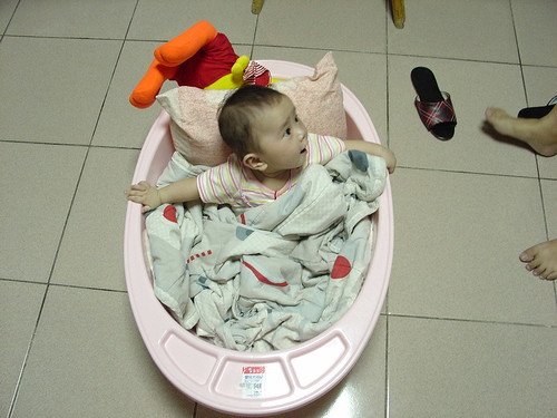 20060826 夏皮在外婆家的樣子.jpg