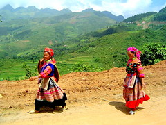 Hmong Girls walking from Bac Ha Market (Phil-osophical Bird) Tags: clothing women culture vietnam colourful ethnic cultural hmong sep04 ethnicity hilltribe bacha hmongwomen hmongtribe bachamarket hmongwoman ethnicwomen ethnicwoman vietnamculture hmongculture bachawoman womeninculture womenculture bachawomen