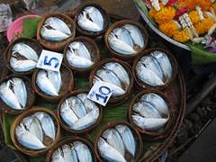 AUX ENVIRONS DE BANGKOK dans 2007 Thaïlande 2062023982_8b9c6e8ce8_m