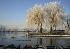 winter 3 (Photos Marlies) Tags: trees winter snow water boats bomen sneeuw bootjes