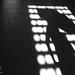 Lida Negro|Sombras