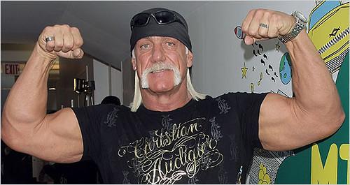 Hulk Hogan biceps