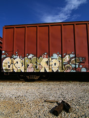 EARSNOT by SACE (TRUE 2 DEATH) Tags: railroad blue sky cloud streetart train airplane graffiti name tag graf railcar ear boxcar railways railfan snot sace sacer freight irak earsnot benching 2112008220635