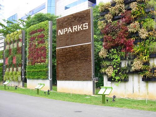 Kampong plants (1) - Nparks