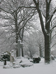 Silent Winter Witness (Chicago) (auntjojo) Tags: trees winter white snow chicago cemetery statue angel cross montrosecemetery unature unaturefav lpcemetery lpwinter