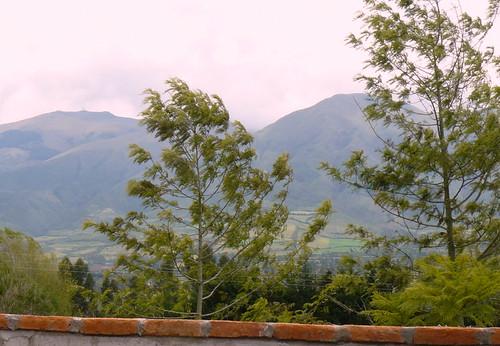 Cotacachi design home view