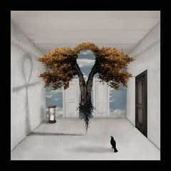 the room: the fall keeper (jackbritboy) Tags: life autumn trees sky black bird fall glass clouds death trapped shadows surrealism roots surreal hour material crow symbols conceptual raven surrealistic trap symbolism hourglass blackdoor whitedoor thewhiteroom