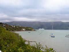 448 - Glen Bay à Akaroa