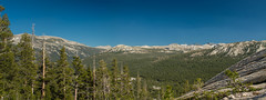 IMG_6672-Edit-Edit (dangerismycat) Tags: california yosemite yosemitenationalpark tuolumnemeadows lembertdome panorama