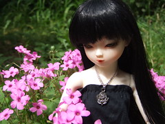 Kyoko in the Garden... (Akemi^_^) Tags: door girls black flower cute eye girl ball garden hair out toy toys spring eyes doll dolls chinese cutie wig bjd blythe lovely cuteness oriental dollfie yumi kyoko msd bambola jointed elfdoll dollmore inika