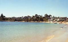 (a-e-m-e) Tags: ocean winter sea summer tree film beach water rose docks garden kodak wharf pentaxk1000 tasmania cpast