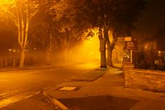 IMG 0011 (sallyburgess1970@btinternet.com) Tags: road street light house fog sepia night corner dark evening photo scary streetlight forsale picture spooky advert distance desolate mellow advertise autumnviews