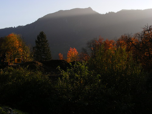 autunno ultime luci