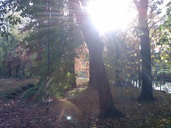 Parco Lambro a Milano in novembre