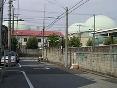 14橋場の源内_01