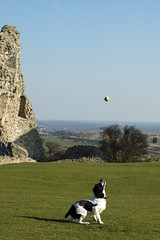 A Day Out At Hadleigh Castle (8 of 11)