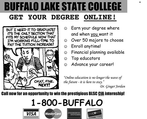 Microsoft Word - buffalo lake state.doc