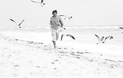 correr ms lejos, volar ms alto (quino para los amigos) Tags: sea usa selfportrait black beach mar fly miami autoretrato run bn nike gaviotas justdoit correr seagal quino volar