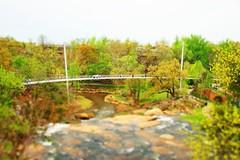 Liberty Bridge Tilt Shift