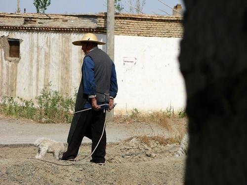 Near Wutai, Xinjiang Province, China
