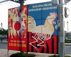 poster propaganda birdflu vietnam h5n1
