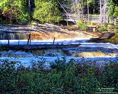 One of the Lower Falls at Tahquamenon Falls State Park in Michigan (PhotosToArtByMike) Tags: tahquamenonfalls lowerfalls michigan tahquamenonfallsstatepark mi tahquamenonriver upperpeninsulaofmichigan upperpeninsula up uppermichigan waterfall river tanninswater tannic cedarswamps forested forest newberrymichigan autumn autumnleaves