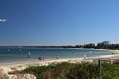 2017 Sydney: Botany Bay #15 (dominotic) Tags: sydney nsw australia newsouthwales 2017 seagull botanybay beach brightonlesands ladyrobinsonsbeach
