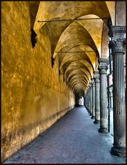 Yellow Arcade (albireo 2006) Tags: italien italy yellow jaune lumix italia arcade columns perspective ceiling amarillo giallo bologna vault cloister italie colonnade portico emiliaromagna bellitalia platinumheartaward superstarthebest
