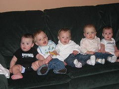 All the babies